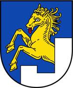 Bramberg Wildkogelarena